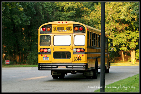 Small_matea_first_day_bus
