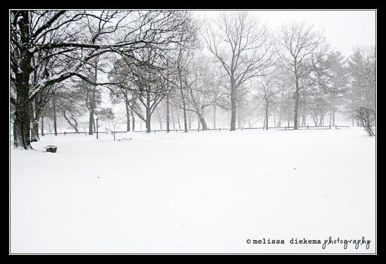 Feb_6_snow_storm_1_small